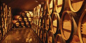 Mavako-BG-LTD-wine-barrel