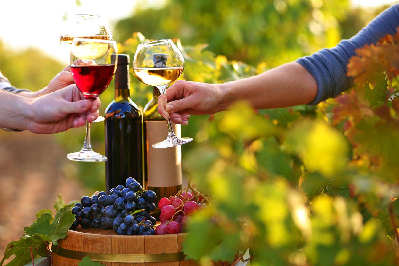 fall-wine-tour-with-letsgotoworld
