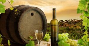 nature-wine